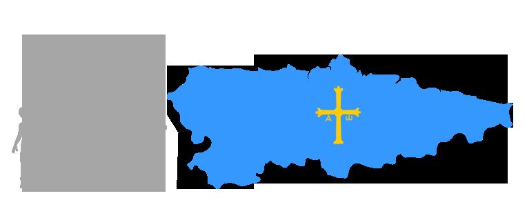 Asociación de Padres de Familia Separados de Asturias (APFS Asturias)